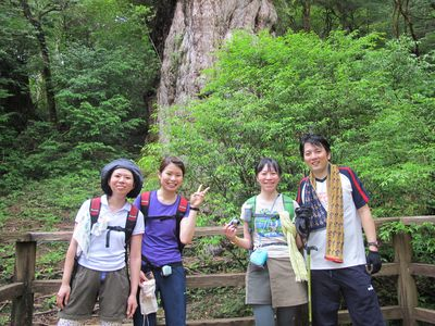 20110818j縄文杉