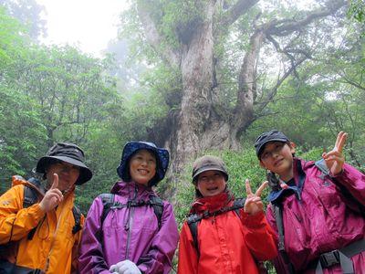 縄文杉ツアー20120526j