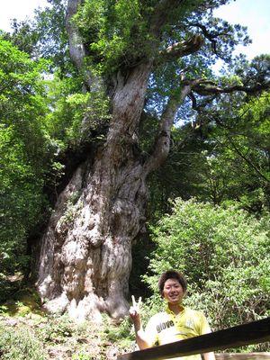 縄文杉ツアー20120704j1