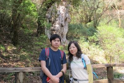 201503縄文杉