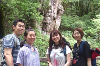20150714縄文杉
