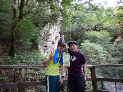 20150820縄文杉
