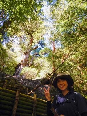 縄文杉ツアー201510