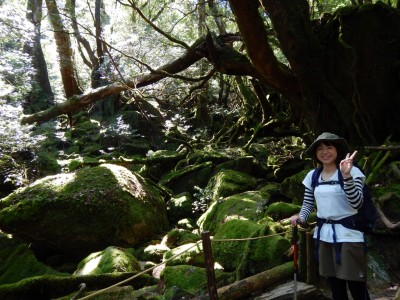 屋久島白谷雲水峡20151004