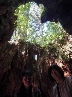 縄文杉ツアー20151029