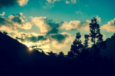縄文杉ツアー小杉谷橋からの朝日