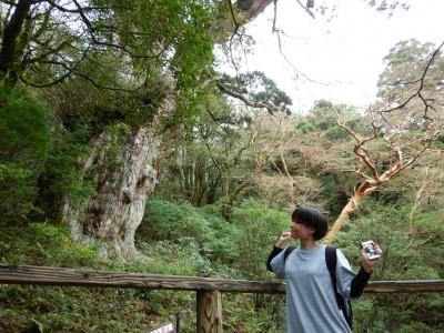 縄文杉ツアー20151124