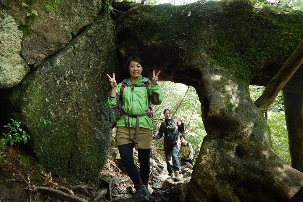 木のトンネルもくぐります。