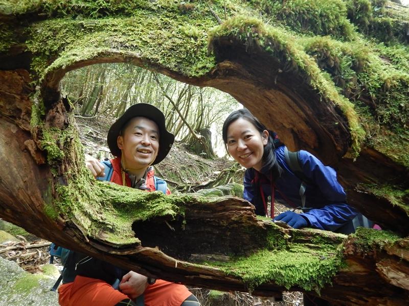 辻峠付近の倒木、遊びながら下ります。