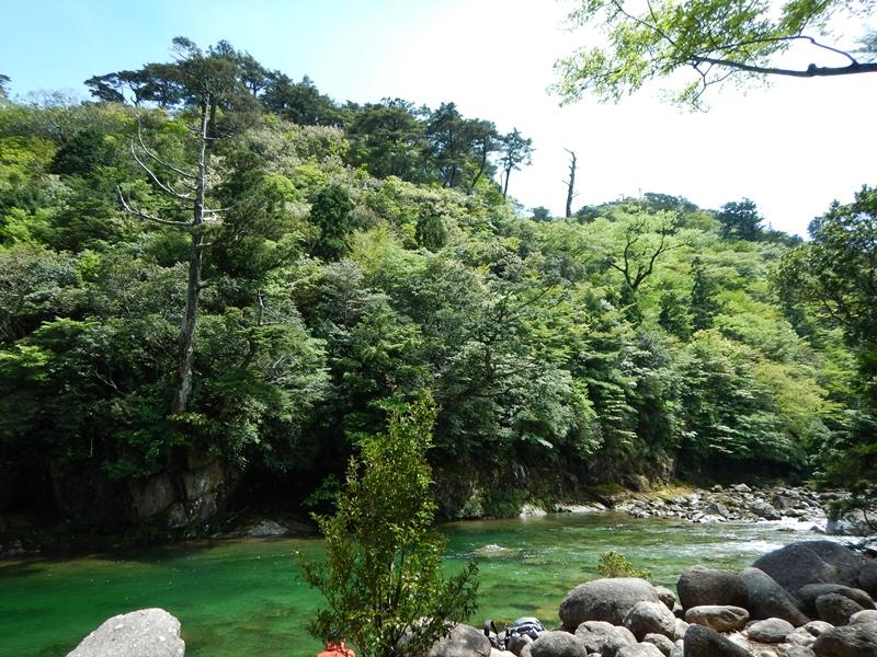 河原で一休み 緑が美しい。