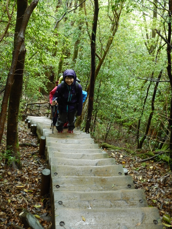 急な階段 がんばって登りましょう!