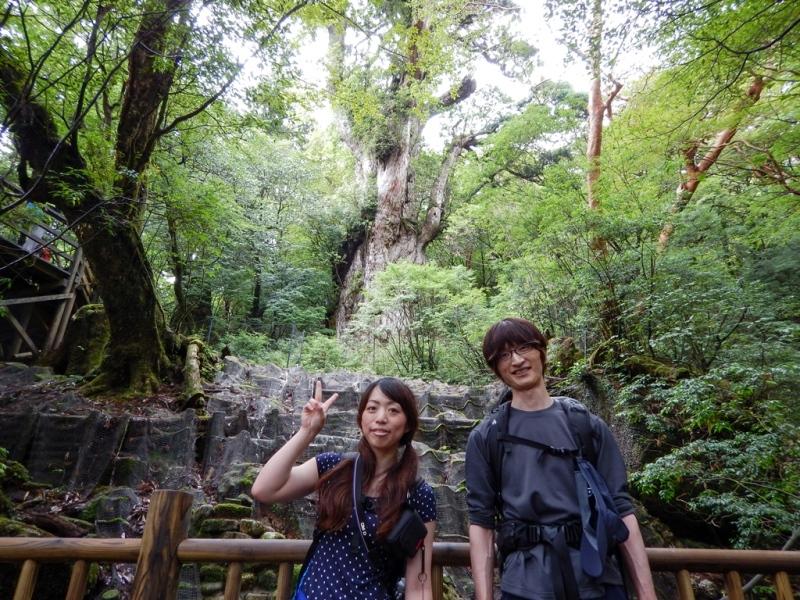 さくっと縄文杉へ!山は一気に涼しくなっていました。
