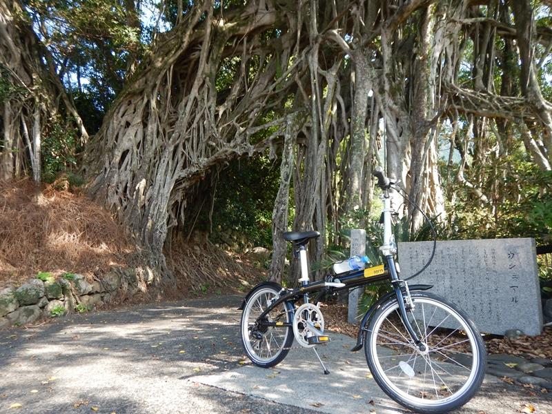 10月7日 サイクリング