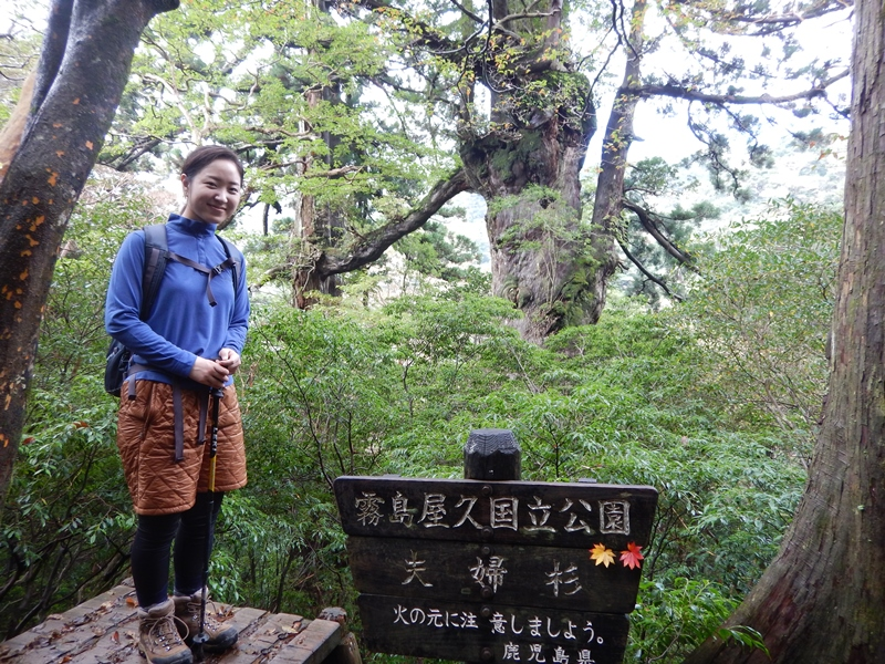 20161025縄文杉ツアー