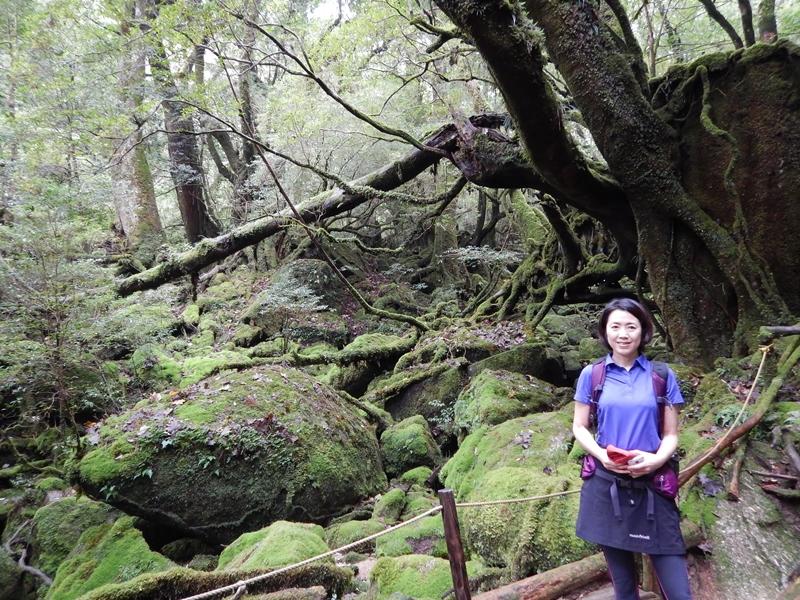 20161026白谷雲水峡ツアー