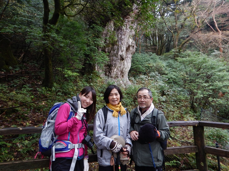 20161128縄文杉