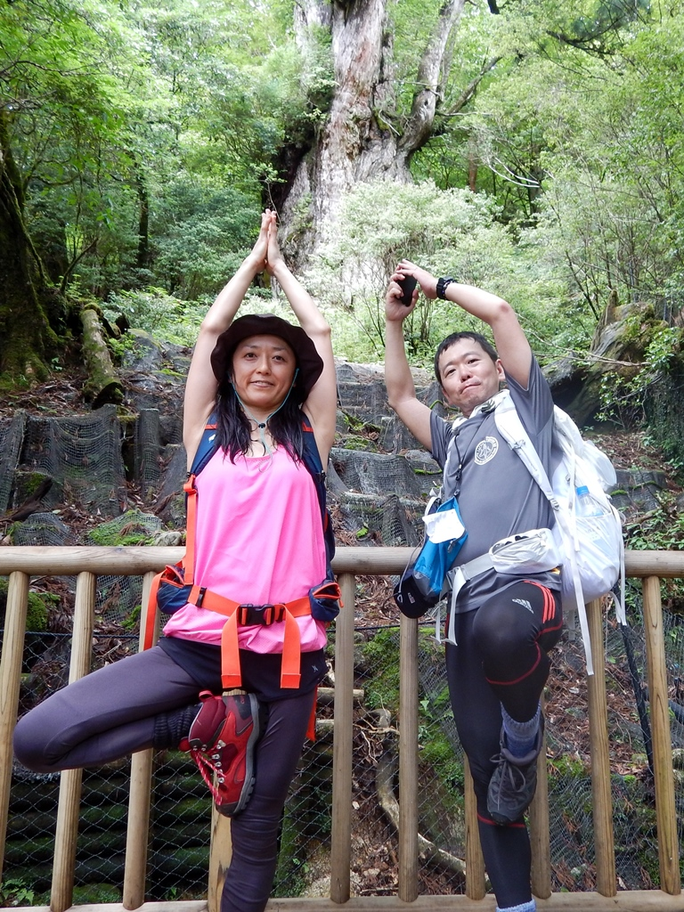 縄文杉で木のポーズ!