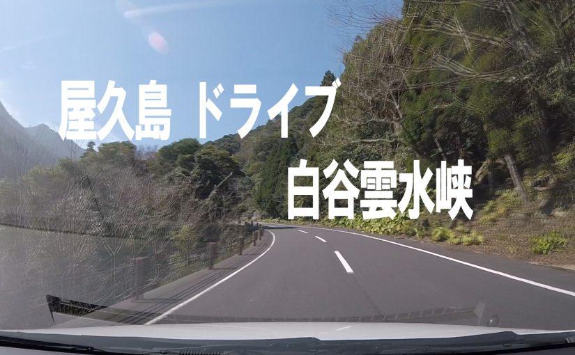 屋久島ドライブ 白谷雲水峡宮之浦線