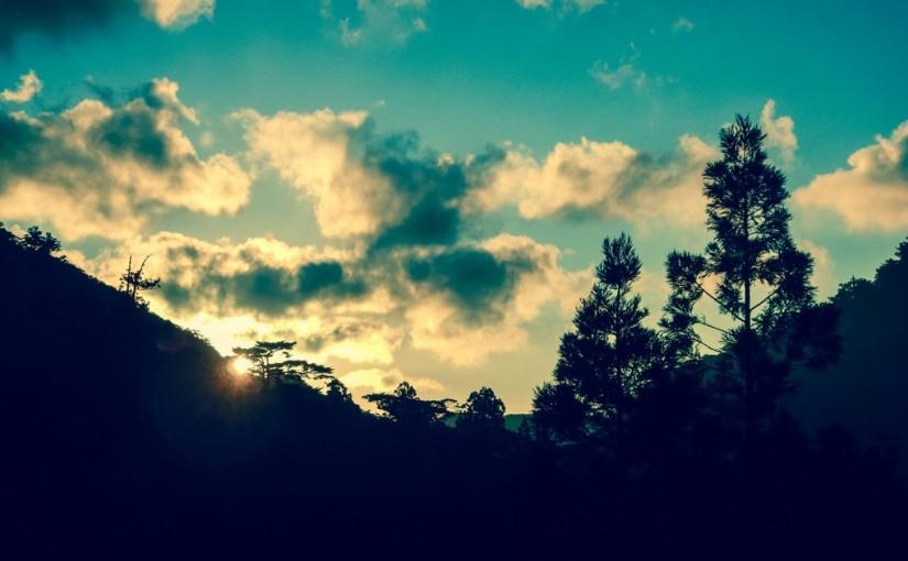 [お客様の声] 2015年10月30日 西部林道 | 31日 白谷雲水峡/北井様より