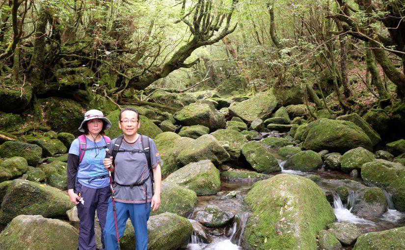 白谷雲水峡 苔むす森と太鼓岩