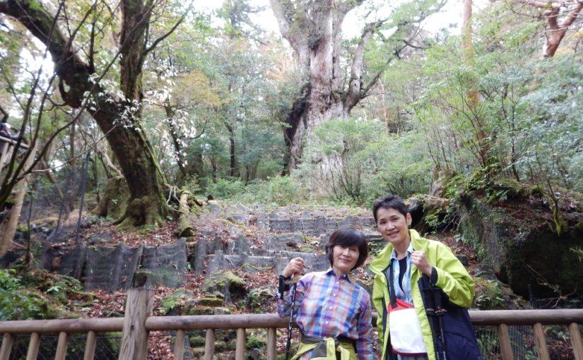 ゆったり4泊5日の屋久島旅行
