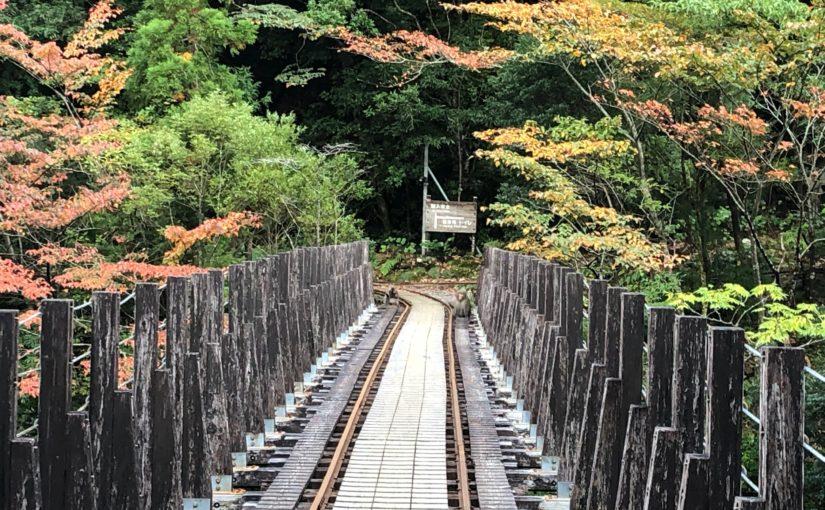 鉄橋にサルの群れが。。